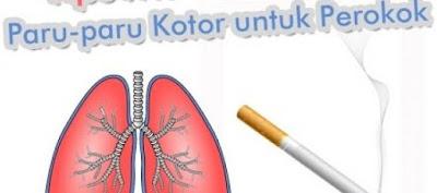 Cara Mudah Membersihkan Paru-Paru Karena Asap Rokok