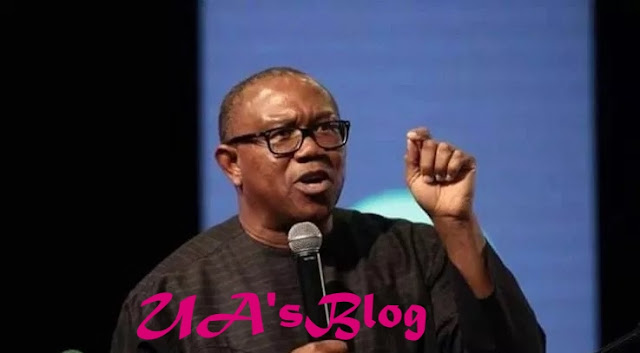 What I will do to El-Rufai for calling me 'tribal bigot'- Peter Obi