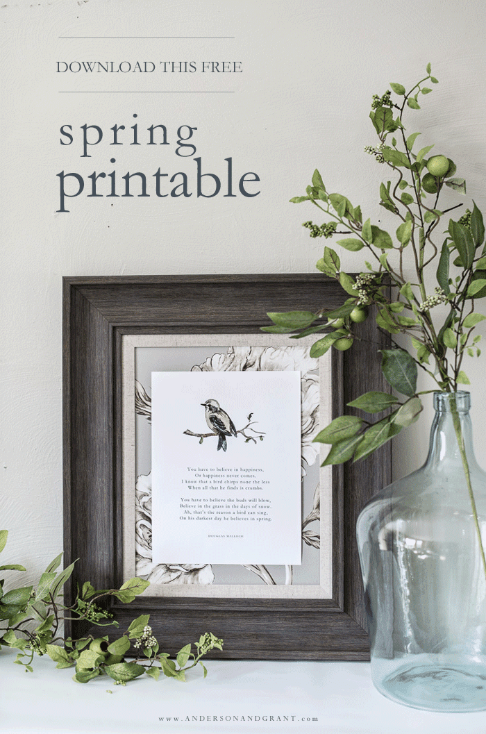 Download a free spring bird printable