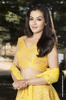 Catherine Tresa in yellow Choli and skirt from My South Diva Calendar Picturegraphed by Manoj Kumar Picturegraphy