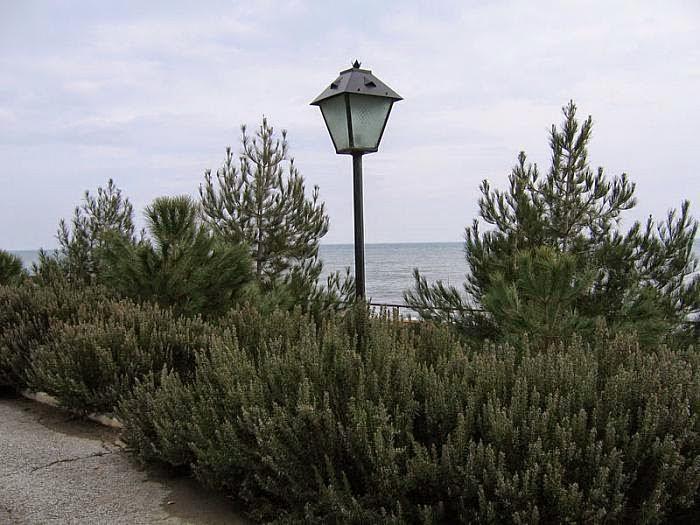 Фото парка в Сатере