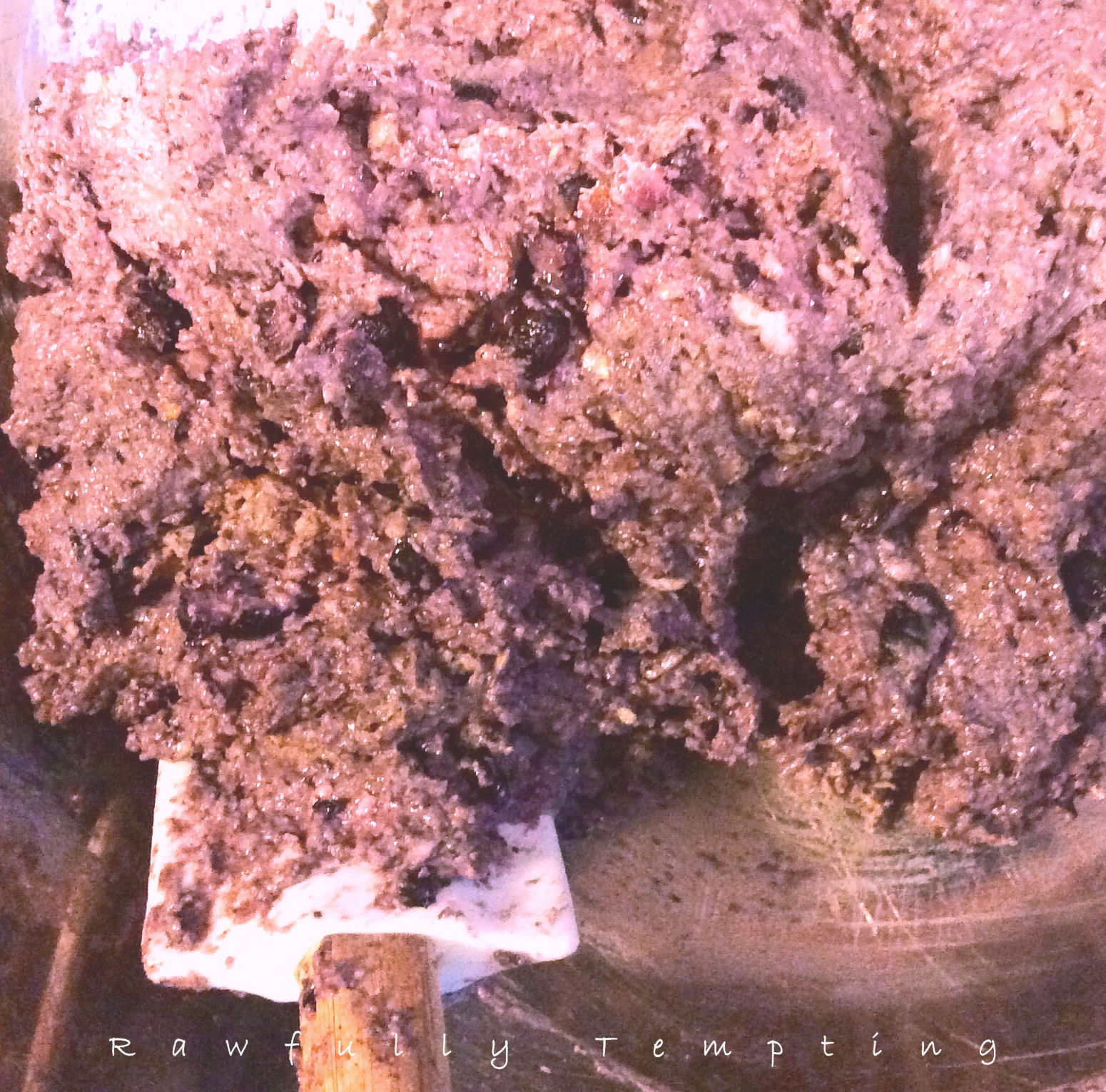 Food Dehydrator Ground Beef Jerky Recipe