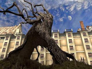 Тургор дерево
