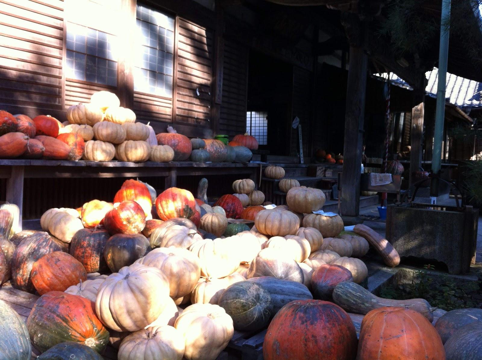 かぼちゃ寺