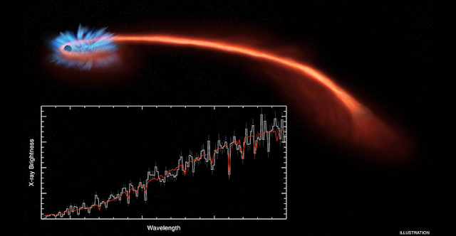 Disruption of a star by tidal forces. As the matter that makes up the star falls onto the black hole, it emits X-rays. The inset shows data collected by three telescopes, with the brightness of X-rays plotted on the vertical axis against the wavelength on the horizontal axis. Image courtesy of NASA/CXC/U. Michigan/J. Miller et al.; Illustration: NASA/CXC/M. Weiss