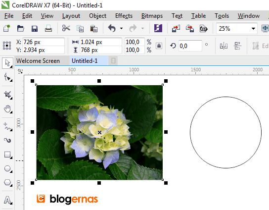 Cara Detail Cropping Foto dengan Corel Draw