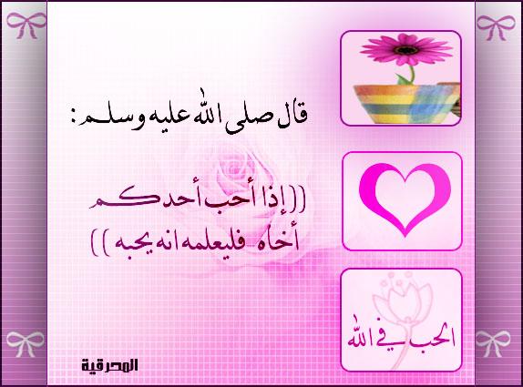 c494fddf4 امثال وحكم عربية مترجمة للفرنسية اوعى تفوتك | egypt