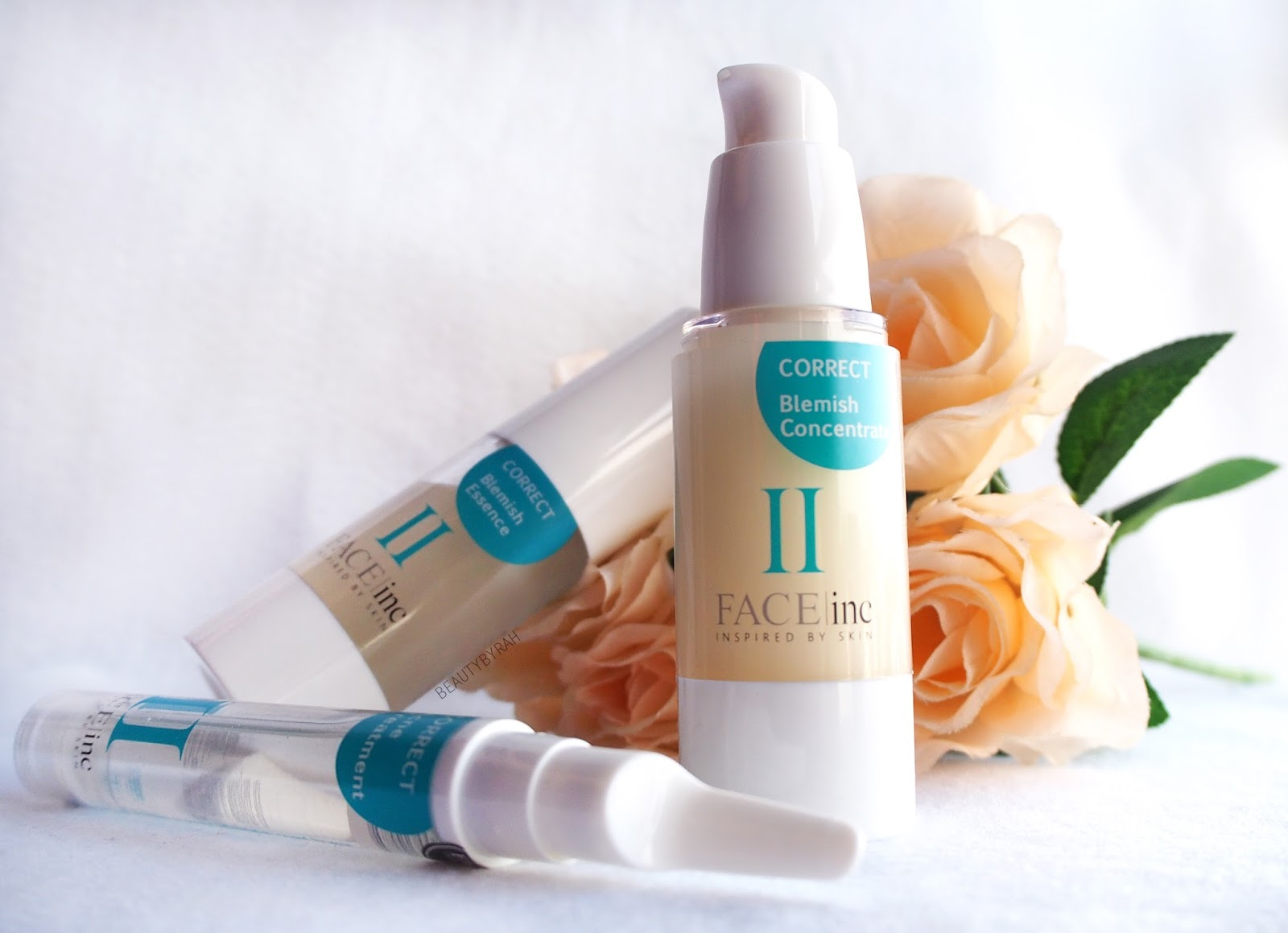 The Face Inc Blemish Trio Set Review
