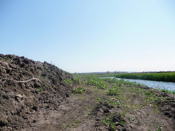 Река Волчья. Ландшафтный заказник «Бакаи». Безжизненное пространство