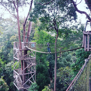Tempat Wisata Di Balikpapan Yang Lagi Hits Bukit Bangkirai