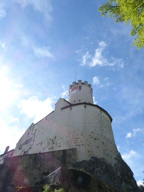 Schweiz Oensingen Urlaub mit Hund Roggen Aussicht Berg Fernblick  Schloss Neu-Bechburg