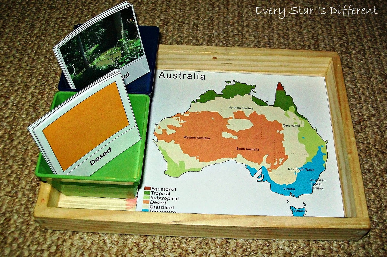 Australia Climate Zones Activity (Free Printable)