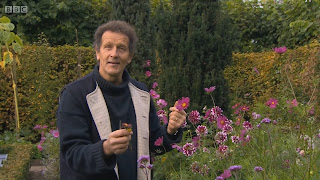 Gardening Tips 01