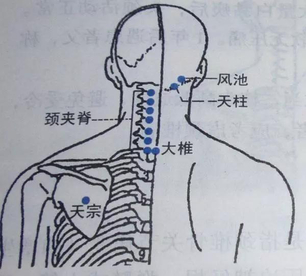 給肩膀按摩,卻越按越累?3個穴位教你快速緩解(心肌梗塞)