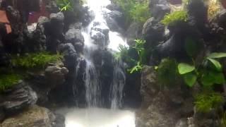 Cara Membuat Air Terjun Aquascape Dsc A Quascape