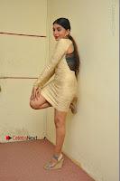 Actress Pooja Roshan Stills in Golden Short Dress at Box Movie Audio Launch  0150.JPG