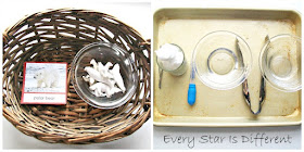 White animal match up (free printable) and science experiment about how it rains.