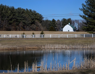 farm scene with pond