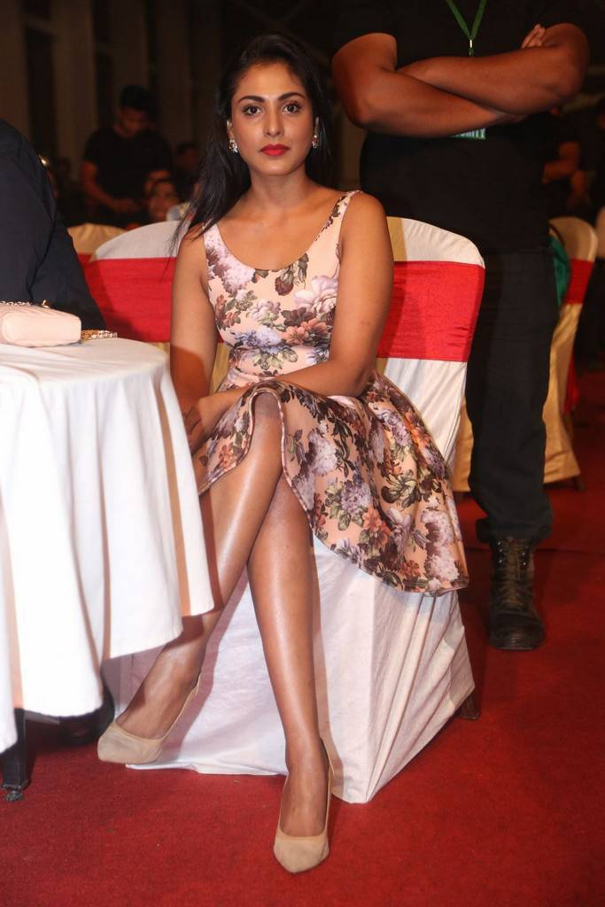 Indian Actress Long Legs In Pink Dress Madhu Shalini