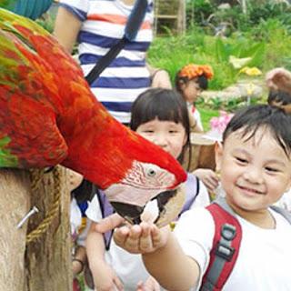 bird-park-melaka-for-school-holidays