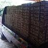 Penjualan Telur Puyuh