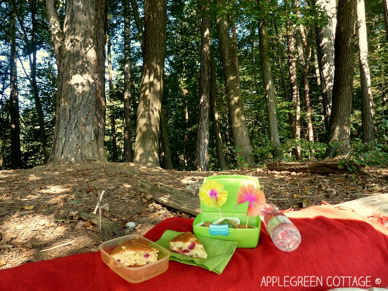 Applegreen Cottage - A simple 3-step guide for any fun outdoors activity