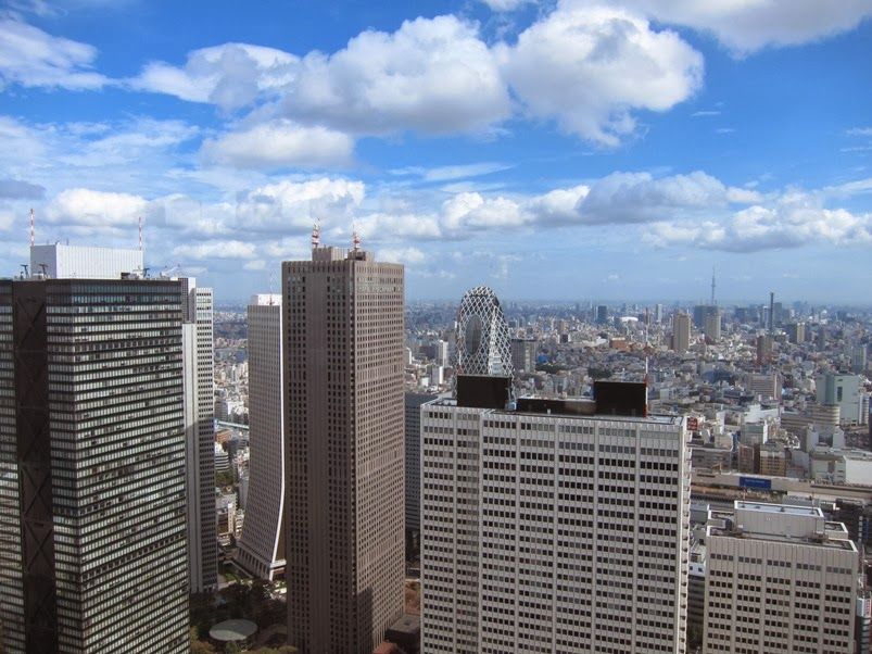 Sky view of Tokyo from TMG during our Japan Trip