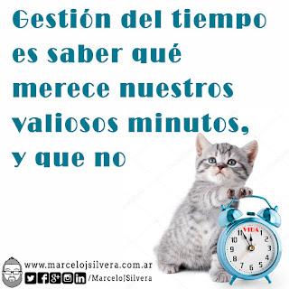 Gatito con reloj que marca el paso de la vida. Frase: Gestión del tiempo es saber qué merece nuestros valiosos minutos,  y que no