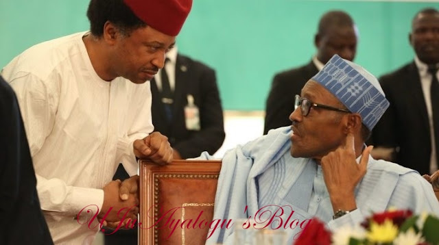 Shehu Sani: The political elite see Buhari as a meal… they want him re-elected for survival