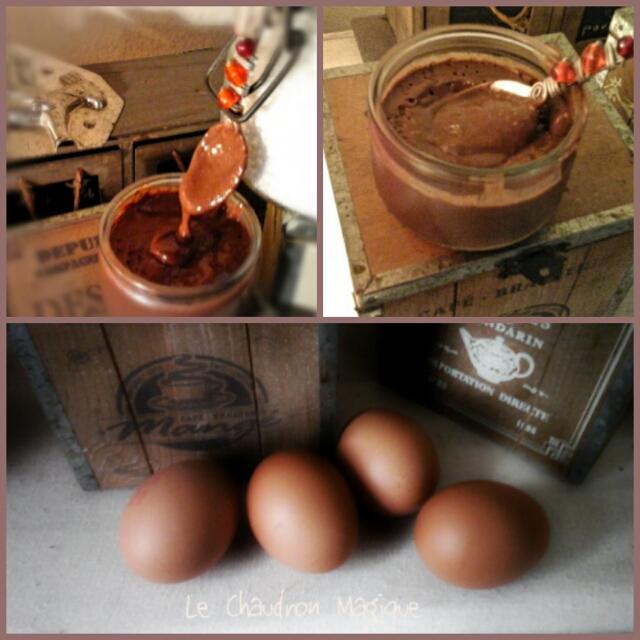 Le Chaudron Magique Monsieur Cuisine Les Crèmes Au Chocolat