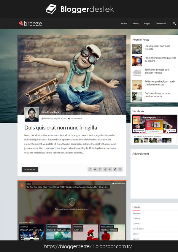 Breeze Mobile Compatible Personal Blogger FREE Theme