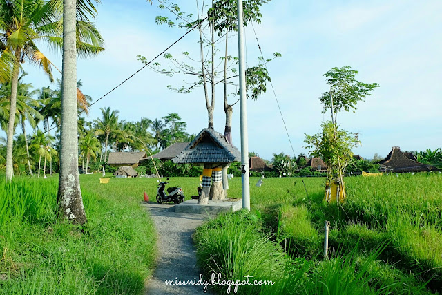 lokasi cafe pomegranate ubud