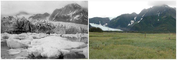 song bang pedersen glacier
