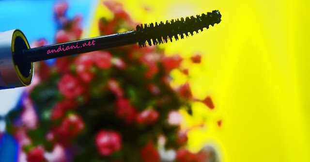 QL-Eye-catching-2-steps-mascara-review