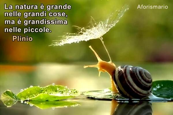 Ben noto Aforismario®: Natura - Aforismi, frasi e proverbi DW97