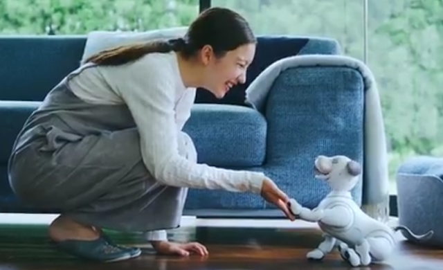 Sony Is Launching AN EXTREMELY High Priced Automatic Robot Puppy