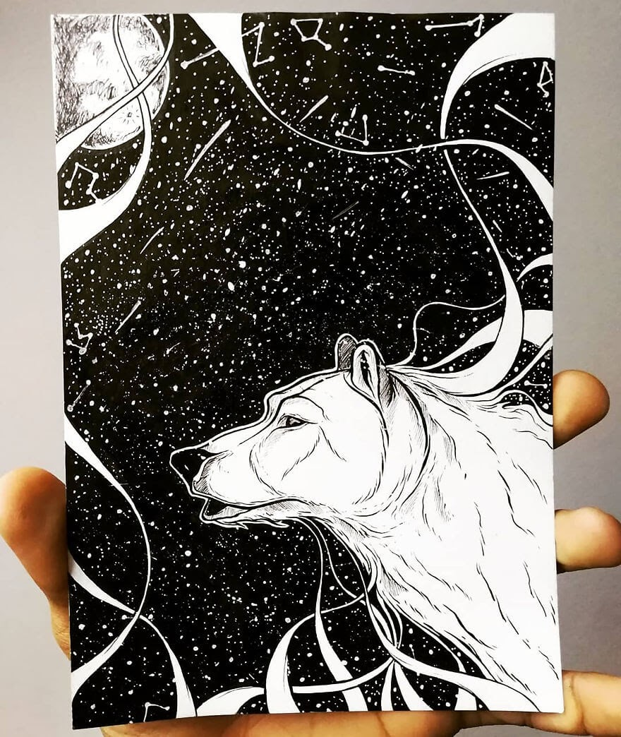 11-Ursa-Major-Polar-Bear-Bráulio-Monteiro-Moleskine-Pen-and-Ink-Animal-Illustrations-www-designstack-co