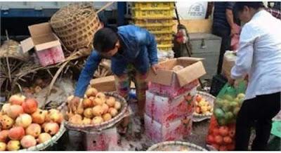 Tâm sự từ chủ buôn hoa quả Trung Quốc