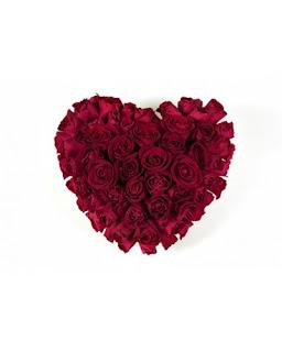 ורדים בצבע אדום בצורת לב