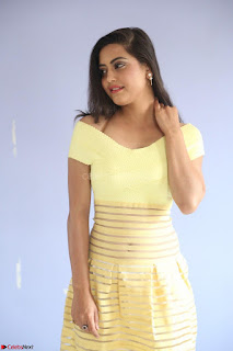 Shipra gaur in V Neck short Yellow Dress ~  067.JPG