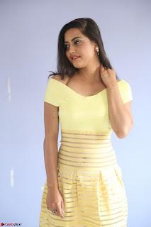 Shipra gaur in V Neck short Yellow Dress ~  067.JPG
