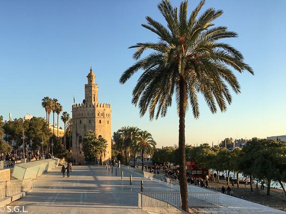La torre del oro. 10 visitas imprescindibles de Sevilla