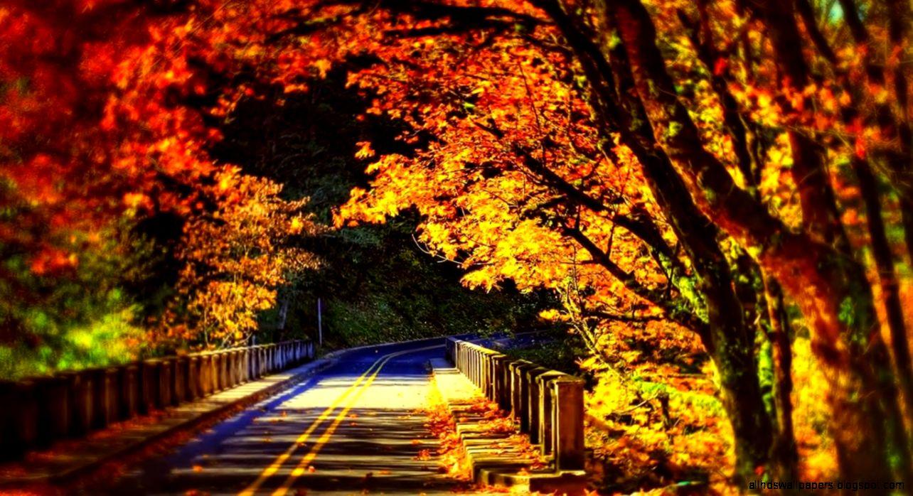 Fall Wallpapers Tumblr Wallpapers High Resolution: Scenic Autumn Desktop Wallpaper