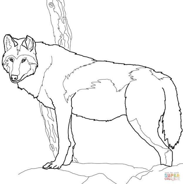 Wolf Free Coloring Pages On Art