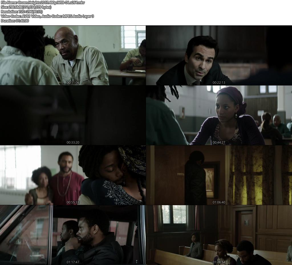 Crown Heights 2017 480p WEB-DL 300MB x264 Screenshot