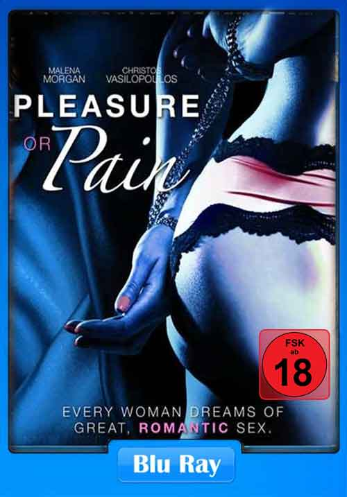 [18+] Pleasure Or Pain 2013 BluRay 300MB Poster
