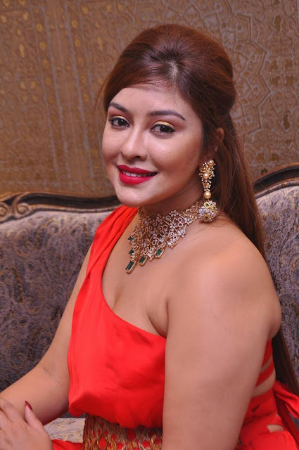 Payal Ghosh Stills At Kalasha Fine Jewels Event