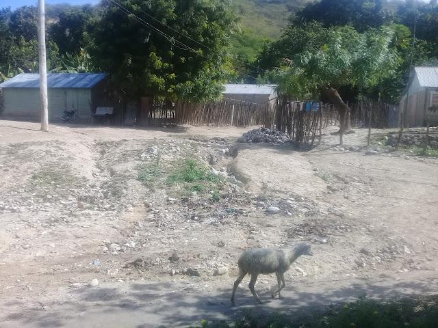 Paraje de Lemba, Salinas clama por ayuda del gobierno; moradoras apunto de abandonar poblado