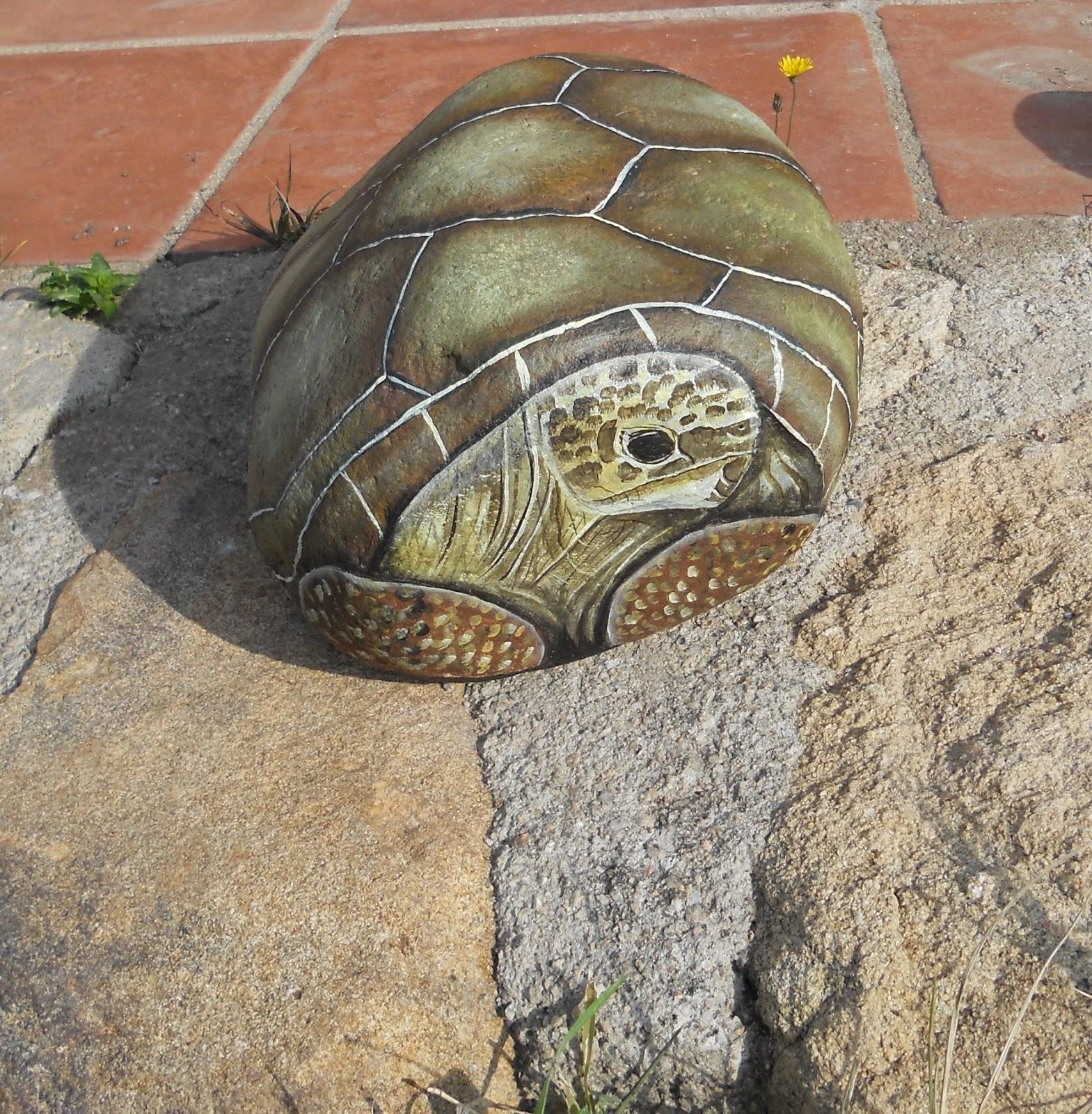 Piedras pintadas a mano piedra pintada con tortuga terrestre for Piedras pintadas a mano paso a paso