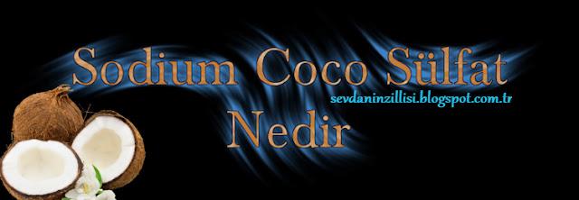 sodium-coco-sulfate-nedir